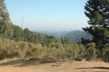 Another Redwood Creek scenic view
